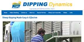 Dipping Dynamics